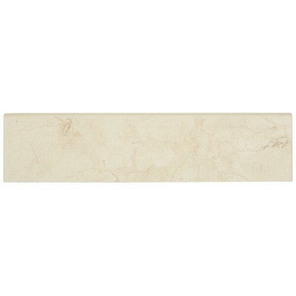Florentine 12 x 3 Porcelain Bullnose Tile Trim in Marfil by Daltile
