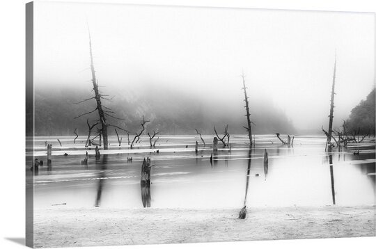 Desolated by Nicolas Marino Photographic Print on Canvas by Canvas On Demand