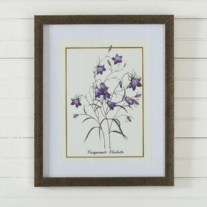 Vintage Floral Framed Print VII by Birch Lane™