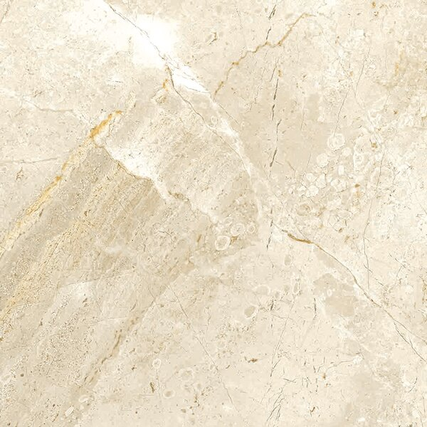 Peyton 12 W x 12  Porcelain Field Tile in Off-White by Parvatile