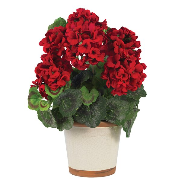 Silk Geranium Desk Top Plant in Decorative Vase by Nearly Natural
