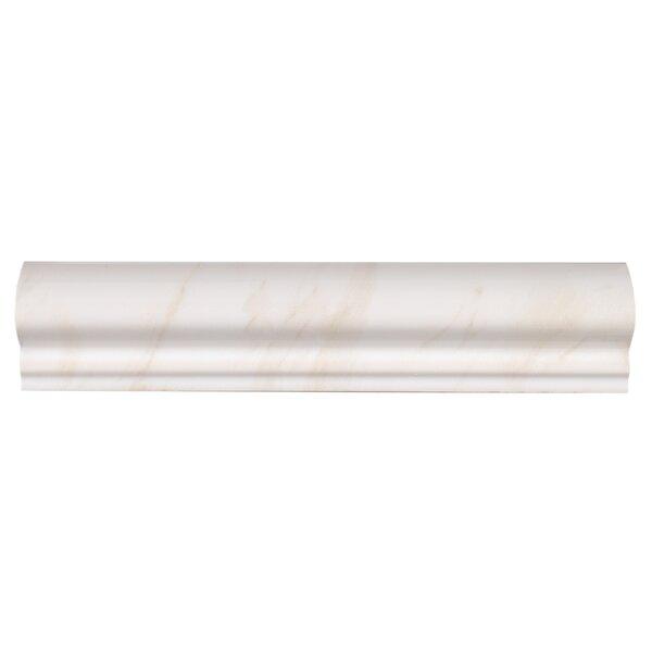 Bradwell 2.5 x 12 Ceramic High Gloss Chair Rail Tile in Bianco Cararra by Mohawk Flooring