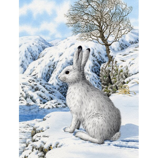 Mountain Hare White Rabbit 2-Sided Garden Flag by Caroline's Treasures