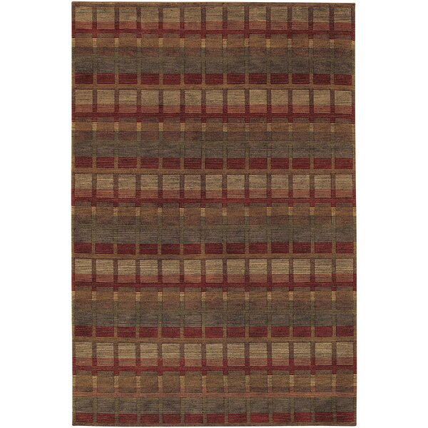 Sammons Symmetry Hand-Knotted Brown Area Rug by Red Barrel Studio