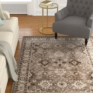 Asheville Taupe Area Rug by Darby Home Co