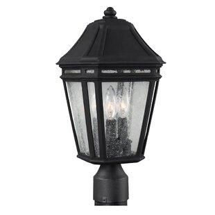Maxine Outdoor 3-Light Lantern Head By Darby Home Co Outdoor Lighting