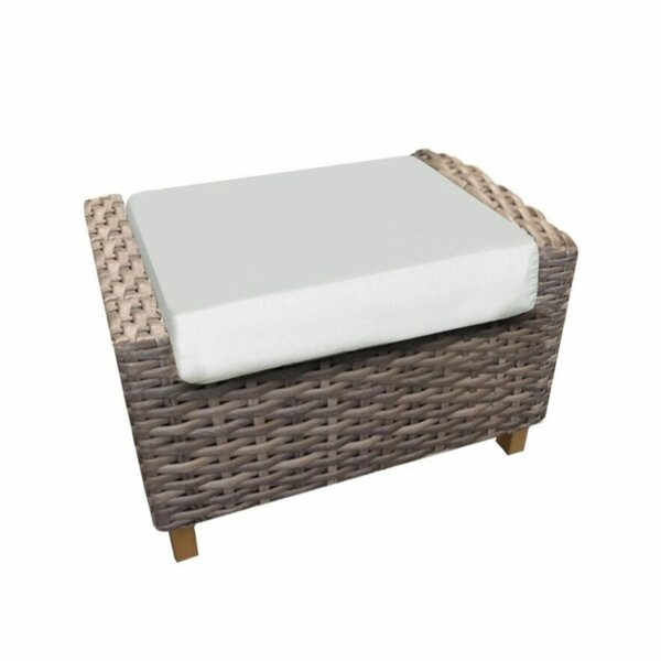 Denson Outdoor Ottoman with Sunbrella Cushions by Highland Dunes