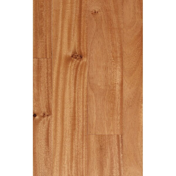 5-1/2 Solid Amendoim Hardwood Flooring in Natural by IndusParquet