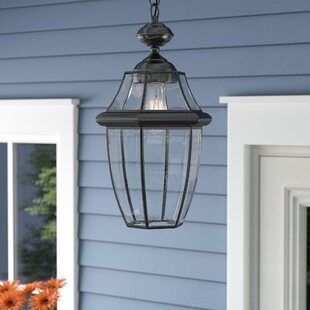 Price comparison Haines LED Outdoor Hanging Lantern By Darby Home Co