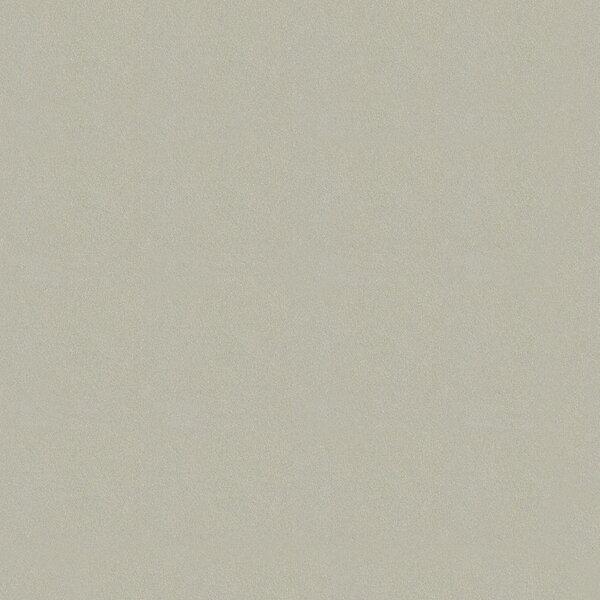 Element 24 x 24 Porcelain Field Tile in Argent Grey by Walkon Tile