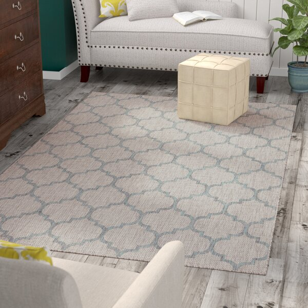 Drinkard Gray Indoor/Outdoor Area Rug by Charlton Home