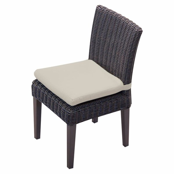 Mejia Patio Dining Chair with Cushion (Set of 2) by Rosecliff Heights