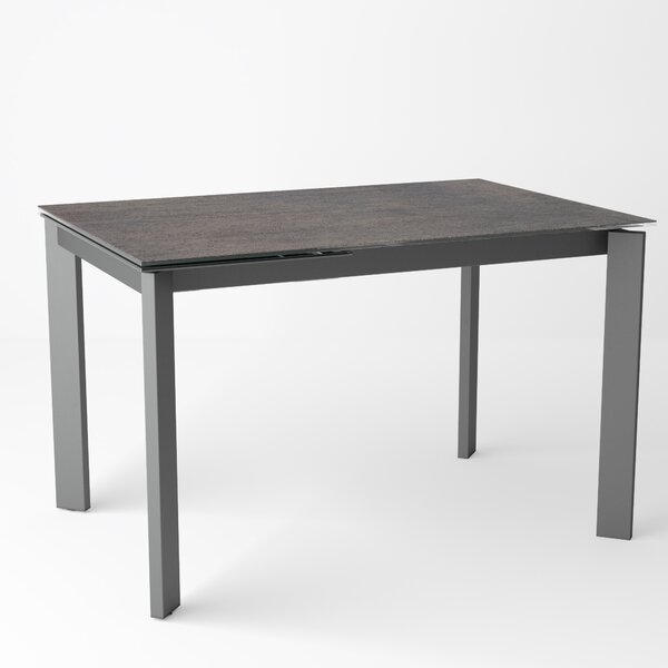 Ripple Extendable Dining Table by Latitude Run
