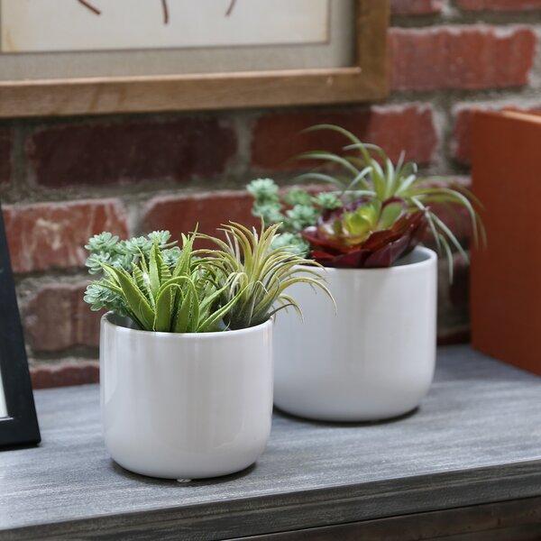 Darwin 2-Piece Ceramic Pot Planter Set by Ebern Designs