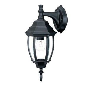 Drumkeeran 1-Light Outdoor Wall Lantern