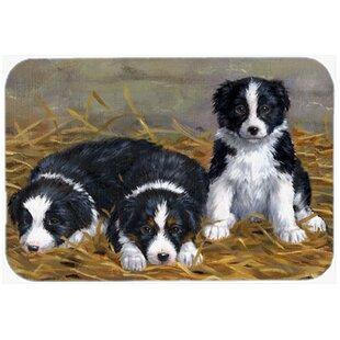 Reviews Border Collie Puppies Kitchen/Bath Mat ByEast Urban Home