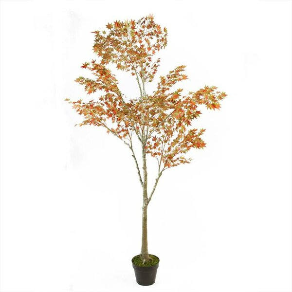 Potted Fall Harvest Artificial Desktop Dream Japanese Maple Tree by Darby Home Co