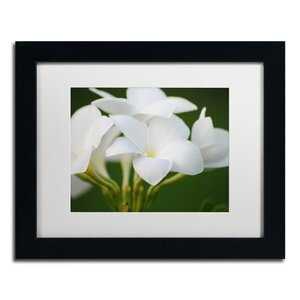 Picture Perfect by Monica Mize Framed Photographic Print by Trademark Fine Art