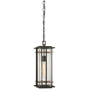 Top Reviews Plaisance 1-Light Outdoor Hanging Lantern By Loon Peak