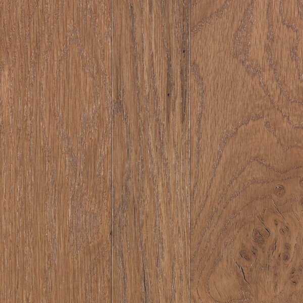 Charmaine 3-1/4 Solid Oak Hardwood Flooring in Matte Glossy Tawny by Mohawk Flooring