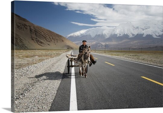 By Donkey on the Karakorum Highway Photographic Print on Canvas by Canvas On Demand
