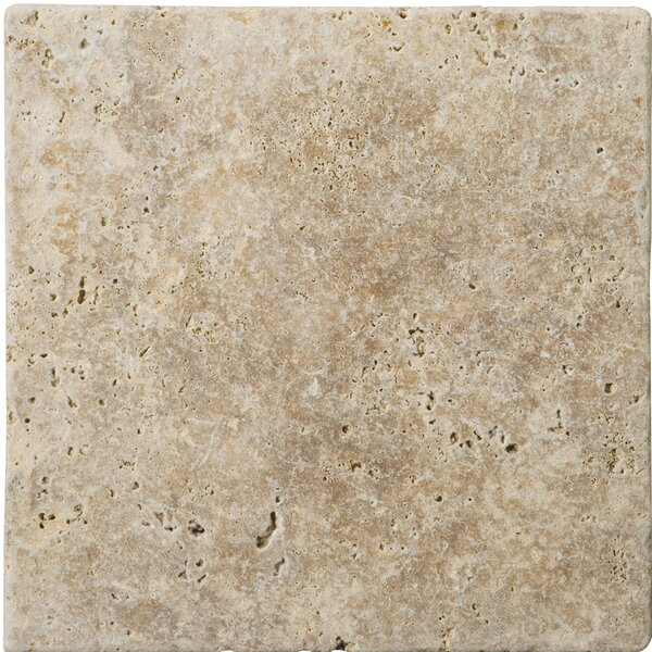 Natural Stone 4 x 4 Travertine Tile in Walnut by Emser Tile