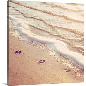 Paw Prints by Carolyn Cochrane Photographic Print on Wrapped Canvas by Great Big Canvas