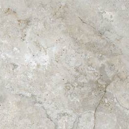 Montana 18 x 18 Porcelain Field Tile in Gray by Parvatile