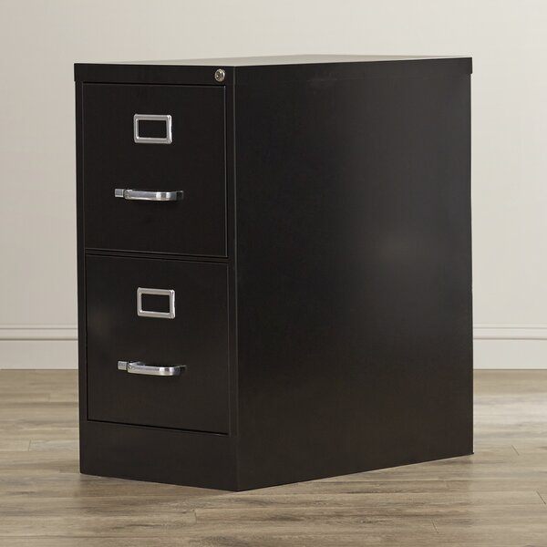 2 Drawer Commercial Letter Size File Cabinet by Symple Stuff