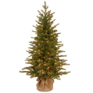 nordic 4u0027 green spruce artificial christmas tree with 200 clear lights