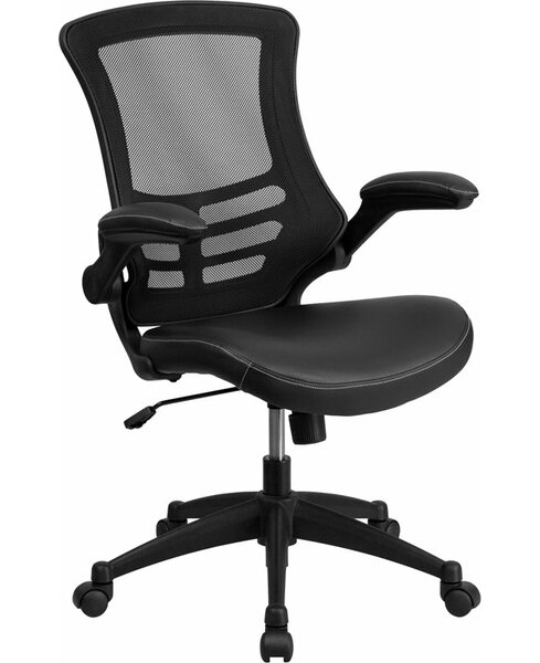 Dunson Mid-Back Ergonomic Mesh Office Chair by Ebern Designs