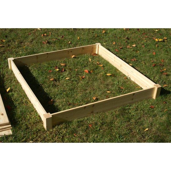 Konkol 4 ft x 4 ft Raised Garden by August Grove