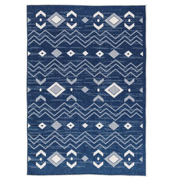 Tseng Reversible Blue Indoor/Outdoor Area Rug by Millwood Pines