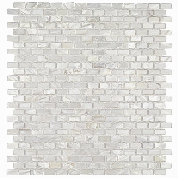 Pitzy .75 x .31 Glass Pearl Shell Mosaic Tile in White by Splashback Tile