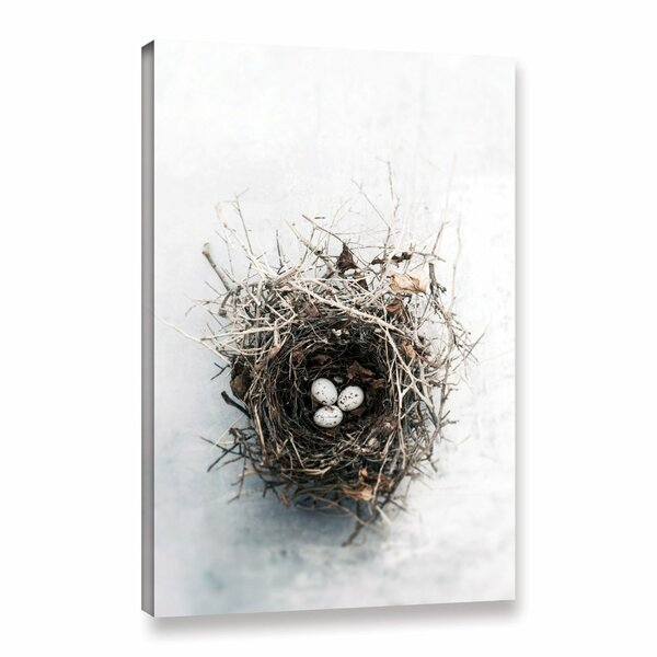 Bird Nest by Elena Ray Photographic Print on Wrapped Canvas by ArtWall