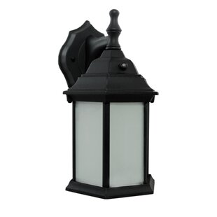 Affordable 1-Light Outdoor Wall Lantern By Efficient Lighting