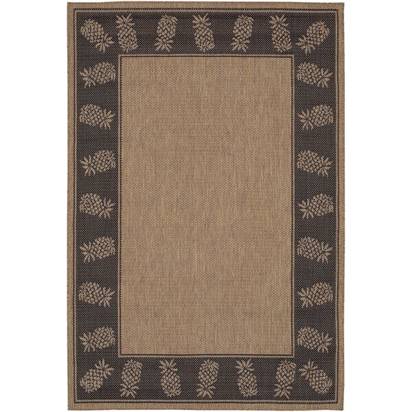 Celia Cocoa Indoor/Outdoor Area Rug by Beachcrest