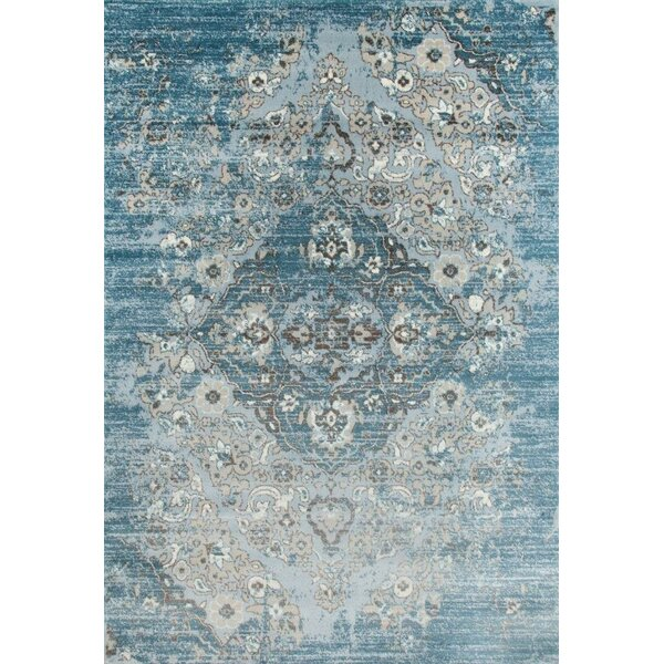 Blocher Blue Indoor/Outdoor Area Rug