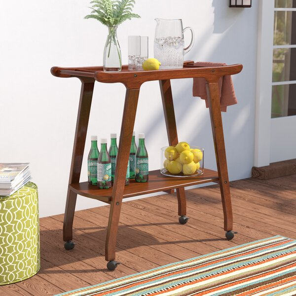 Outdoor Wood Barcart by Langley Street