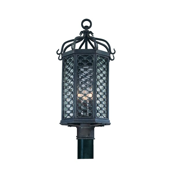 Hinckley Outdoor 1-Light Lantern Head by Darby Home Co