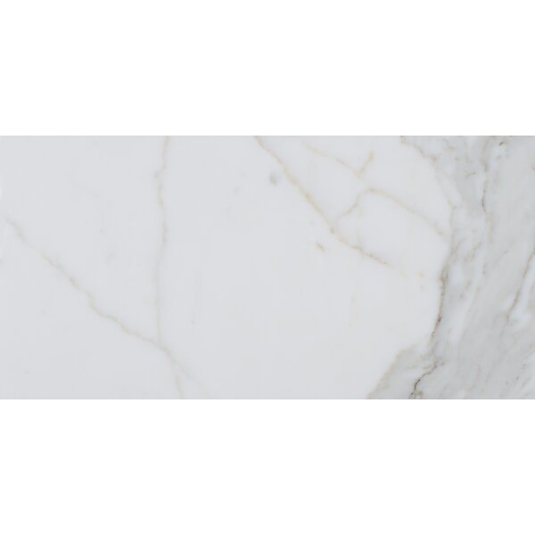Calacatta 12 x 24 Natural Stone Field Tile in White by MSI
