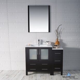 Budget Mance 41 Single Bathroom Vanity Set with Mirror ByOrren Ellis