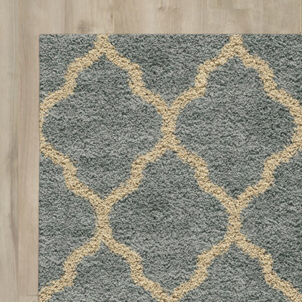 Creal Shag Green/Ivory Area Rug by Darby Home Co