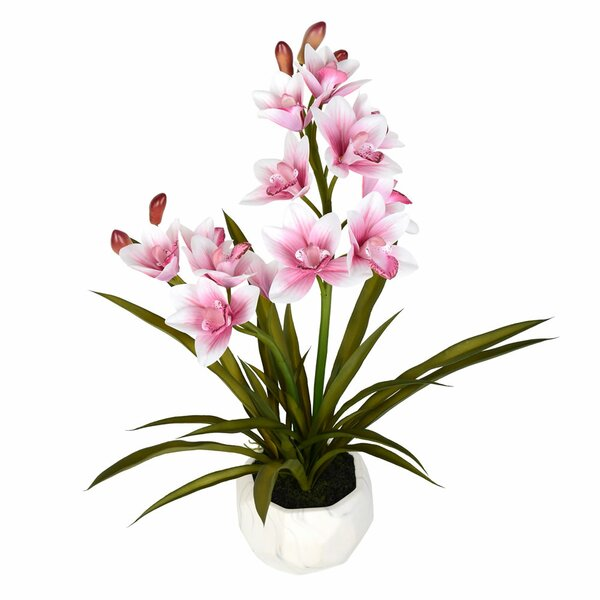 Artificial Phalaenopsis Floral Arrangement in Pot by House of Hampton