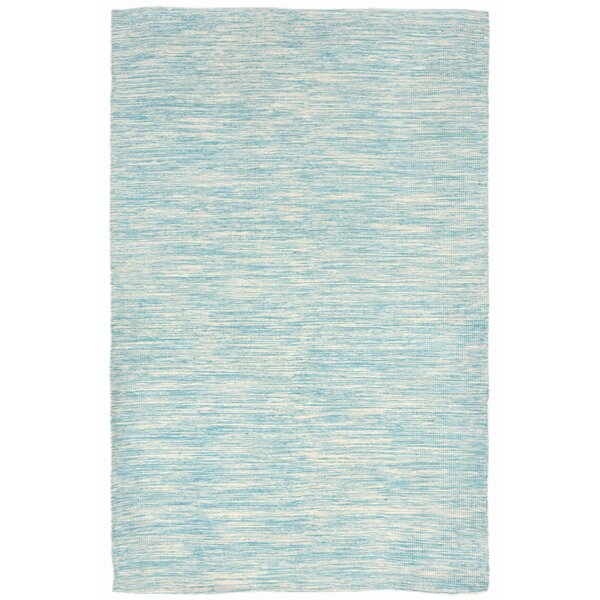 Boerner Hand-Woven Blue Indoor/Outdoor Area Rug by Highland Dunes