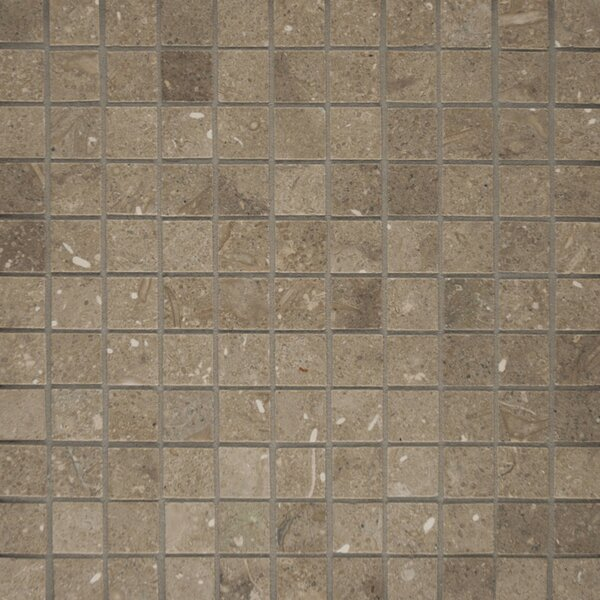 1 x 1 Limestone Mosaic Tile in Seagrass by Epoch Architectural Surfaces