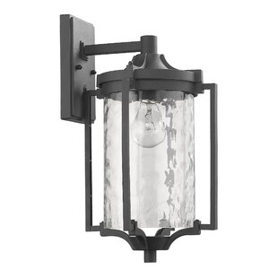 Best Reviews Chateaugay 1-Light Outdoor Sconce By Darby Home Co