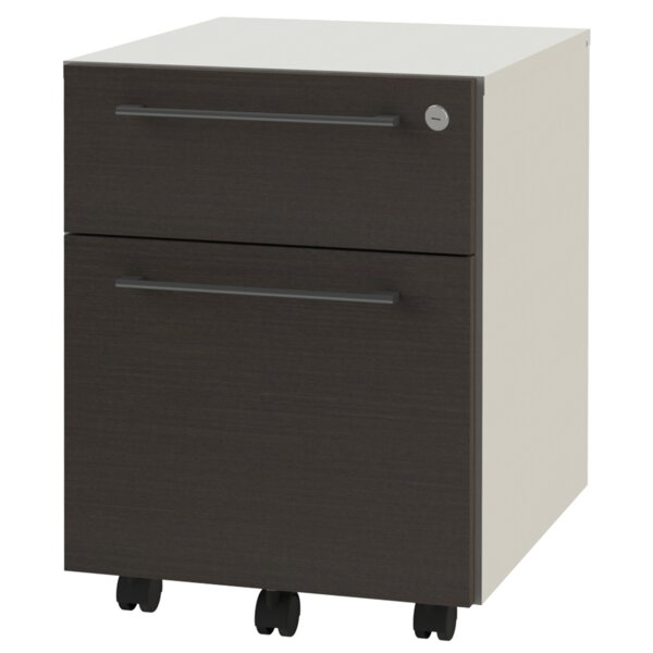 2-Drawer Mobile Vertical Filing Cabinet by OfisLite