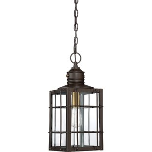Great deal Victorina 1-Light Outdoor Hanging Lantern By Longshore Tides