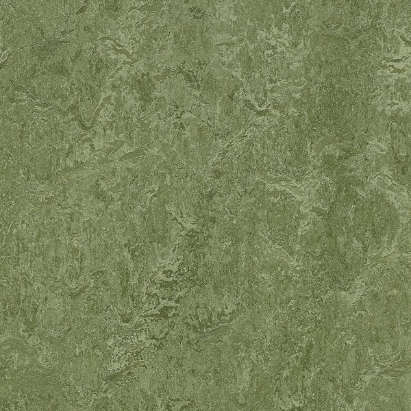 Marmoleum Click Cinch Loc 11.81 x 11.81 x 9.9mm Cork Laminate Flooring in Green by Forbo